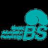 비에스엠아이티 logo
