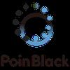 포인블랙 logo