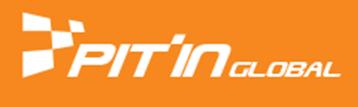 피트인 글로벌 로고
