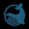 블루웨일파운데이션 logo