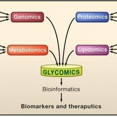 생명의 달콤한 언어 sugar code of life : Glycomics, Glycoscience