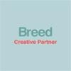 디자인브리드 logo