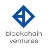 블록체인벤처스(blockchain ventures) logo