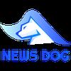 뉴스독벤쳐스(Newsdog Ventures) logo