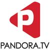 판도라TV logo